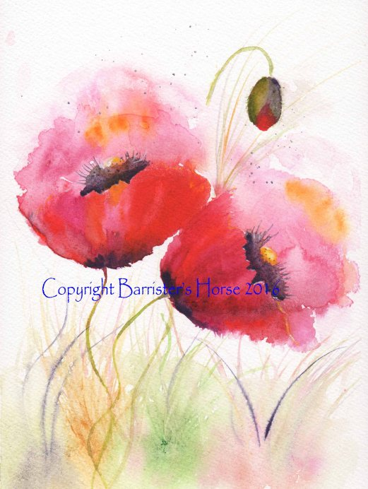 poppies1 copyright