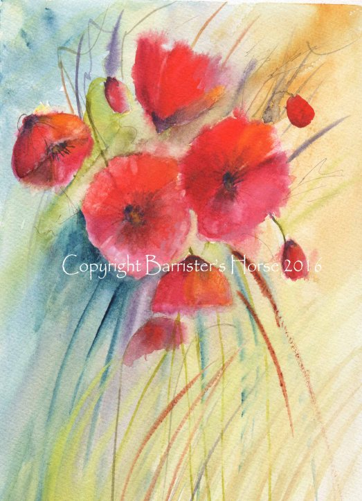 poppies2copyright