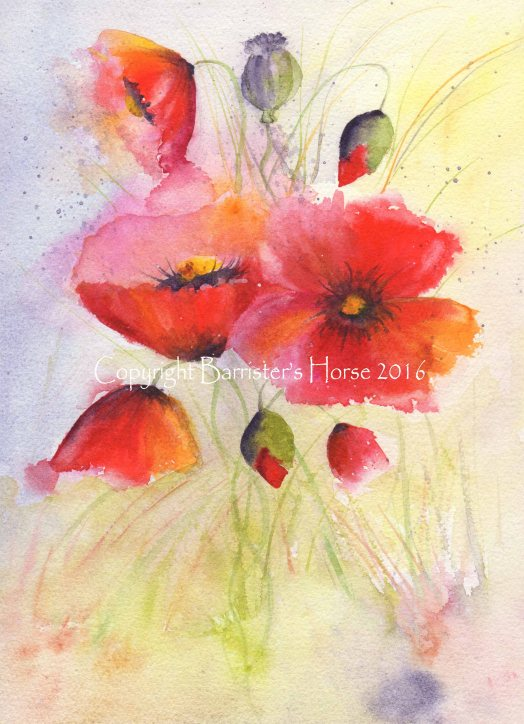 poppies3copyright